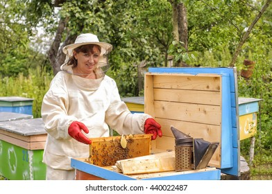 woman beekeeper looks after bees