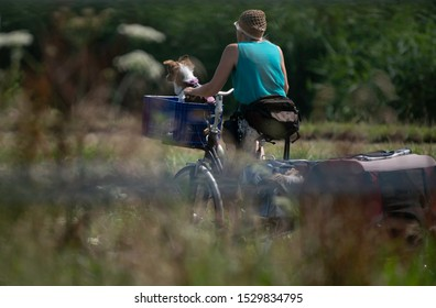 woman bikes in the outdoor nature with dog in basket