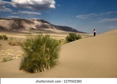 Woman in black dress looking at Ulkan Kalkan mountain from Singing Sand Dune with Saxual trees Singing Sand Dunes, Kazakhstan - September 4, 2016