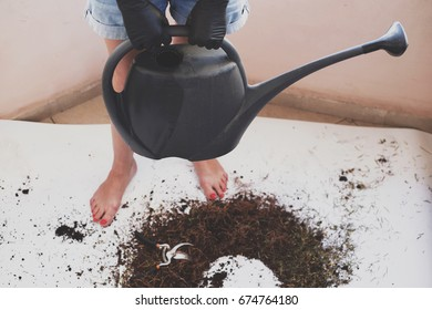 Woman in black gloves is holding the watering pot