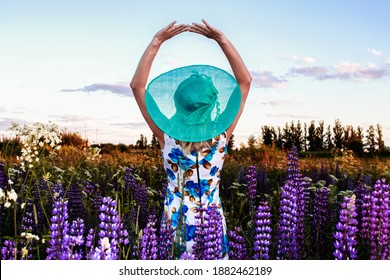 Woman in the blue hat. Rest at nature. It's good to go to a picnic in a nice hat.