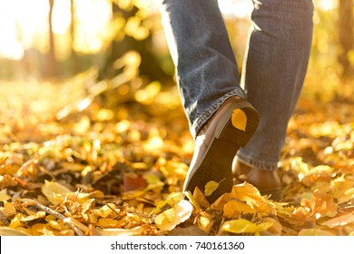 Woman boots in fallen autumn leaves. Go your own way concept