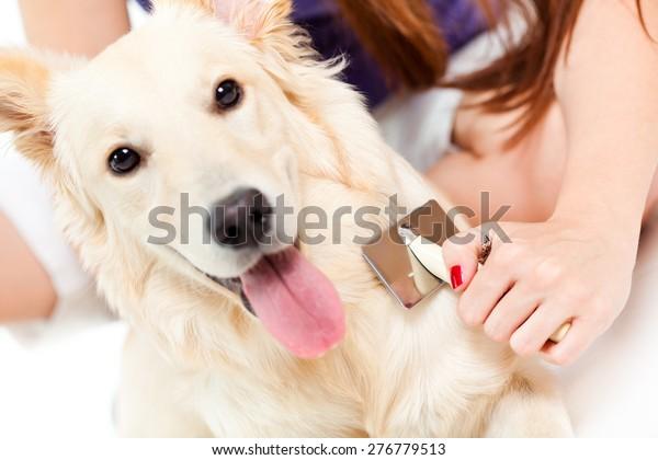 Kvinde børstning hendes hund