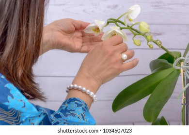 Woman cares for white orchid, wearing ring and bracelet of Japanese white pearls.
