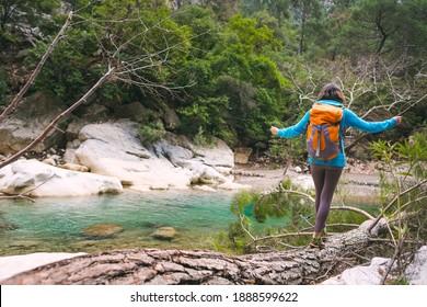 Frauen fangen Balance auf einem Stamm, eine Frau mit einem Rucksack geht über den Stamm eines gefallenen Baumes, ein Mädchen überquert einen Fluss auf einem Stamm, ein Mädchen geht durch den Wald.