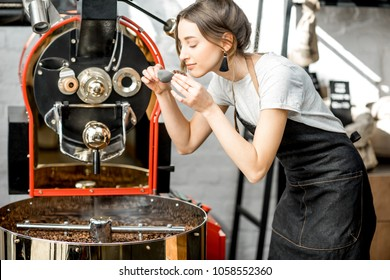 Woman checking the quality of the coffee beans standing with scoop near the roaster machine at the roastery