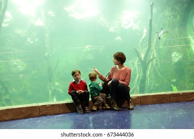 Woman with children looking at fishes in aquarium