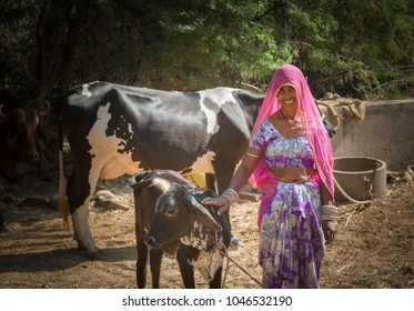 a woman cleaning area near cattle in rural india in traditional dress