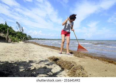 Woman clearing seaweed from the beach