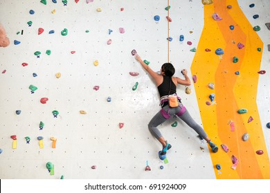 Woman climbing on the wall, view from the back
