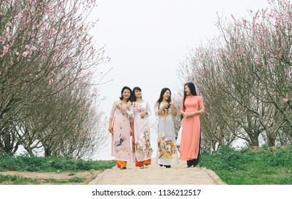The woman in colorful traditional dress goes in the peach blossom garden   very beautiful, on the occasion of the traditional New Year's Day in the capital Ha Noi - Viet Nam.date 02/02/2018
