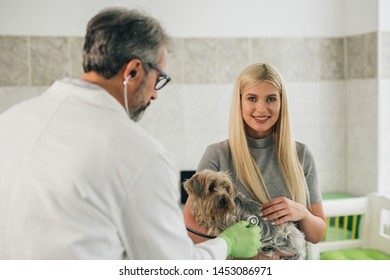 woman consulting with her veterinarian about her pet at veterinary clinic