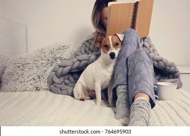 Woman in cozy home clothes relaxing at home with dog Jack Russel Terrier, drinking cacao, reaing a book. Comfy lifestyle.