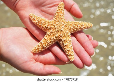 woman cradles starfish in her hands above surf