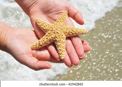 woman cradling starfish in her hands over ocean surf and beach