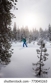 A woman cross country skis across fresh snow in the backcountry of Central Oregon during winter.