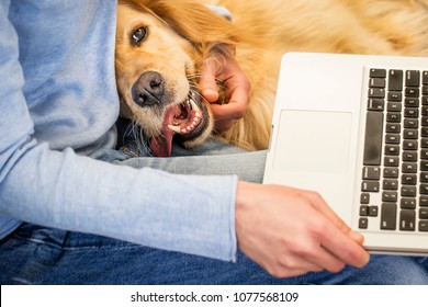 Woman cuddles her dog while preparing to work on laptop