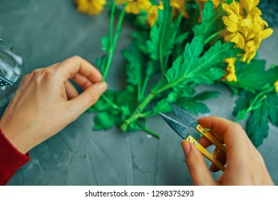 Woman cuts the yellow chrysanthemum flowers for a vase on an antique loft table