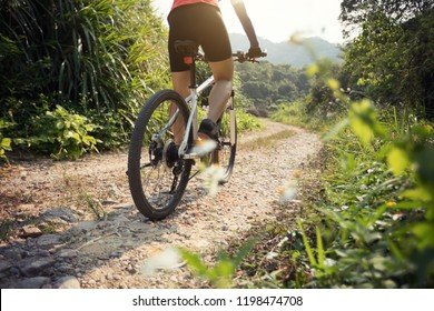 Woman cyclist riding mountain bike on rocky trail at sunny day