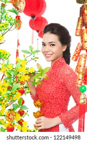 Woman decorating apricot tree for Tet �¢?? Vietnamese New Year
