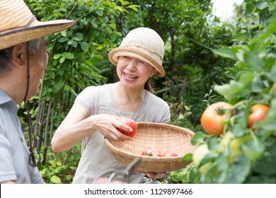 A woman delighted with the harvest of a home garden