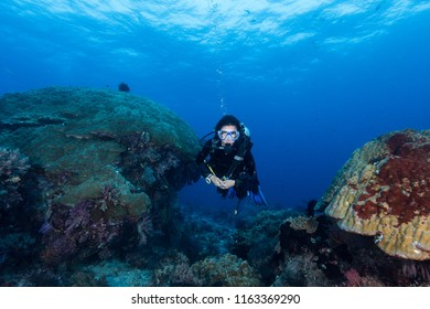 woman diver underwater over a colorful tropical reef with sea fan, coral and sponge in Rajat Ampat, Indonesia