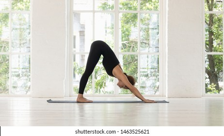 Woman do yoga Downward Facing Dog pose inside of light cozy room through window seen green foliage trees summer landscape morning sun, adho mukha svanasana stronger hands strengthening back exercise