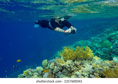 woman does a photo of an underwater landscape with corals and fishes