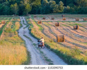Woman with dog and bicycle on a countryside road. Podlasie. Podlachia. Poland, Europe. The region is called Podlasko or Podlasze. Panoramic view.