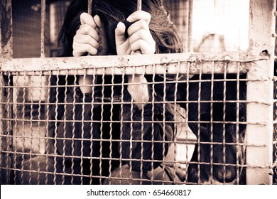Woman and dog in the cage, Human trafficking concept,Blurry portrait,Vintage sepia