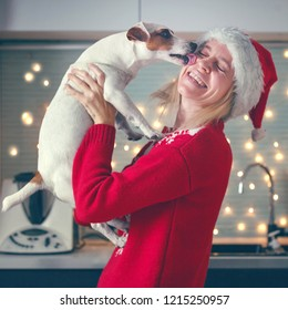 Woman with dog at christmas hat. Family at home