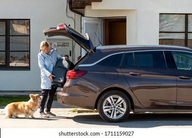 Frau mit Hundekoffer in den Kofferraum des Wagens, Vorbereitung der Reise