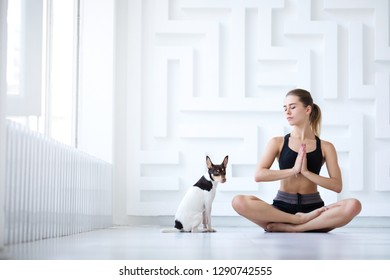 Woman doing yoga. Young beautiful girl in lotus position with her pet at home.