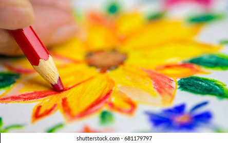 A woman draws with colored pencils flowers on a piece of paper