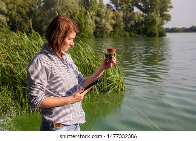 woman ecologist on river bank examines sample of green algae and holds tablet