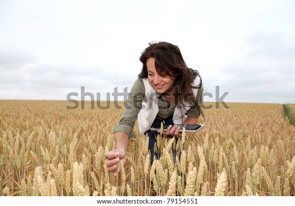 Woman with electronic tablet analysing wheat ears