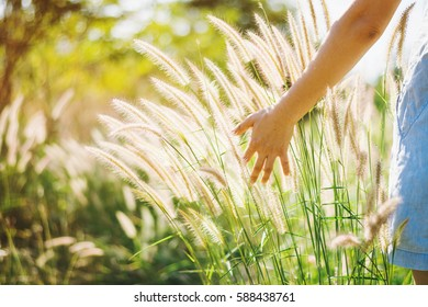 Woman enjoy grass flower in meadow at sunset