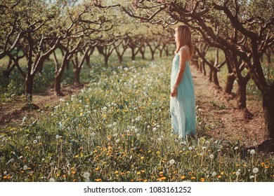 Woman enjoying sun in an orchard. Serenity and harmony