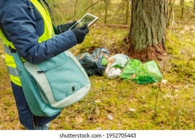 Woman environmental inspector writing data on tablet near garbage pile in forest