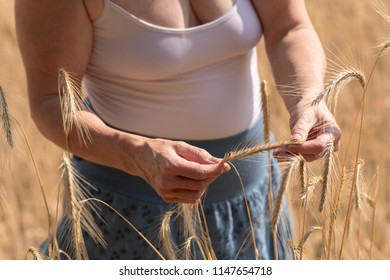Woman examining grain ears