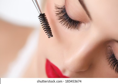 Woman eye with beautiful makeup and long eyelashes. Mascara Brush. High quality image.