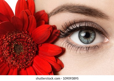 woman eye with beautiful makeup and red flower