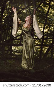 Woman in a fairy forest with arms to the sky. Dark fantasy