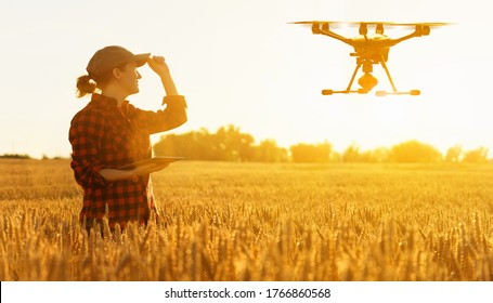 Woman farmer controls drone with a tablet. Smart farming and precision agriculture