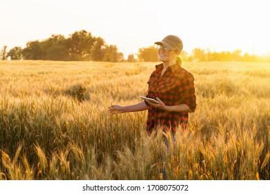 Eine Farmerin mit digitaler Tablette. Intelligente Landwirtschaft und digitale Landwirtschaft.