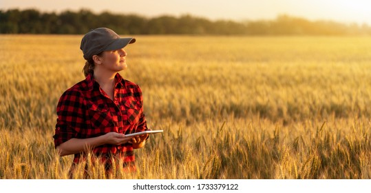 A woman farmer with digital tablet. Smart farming and precision agriculture 4.0.