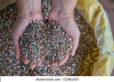 woman farmer hand ?hold fertilizer over yellow fertilizer bag. Nitrogen (N): leaf growth,Phosphorus (P): Development of roots,Potassium (K): Strong stem growth, sometime call NPK
