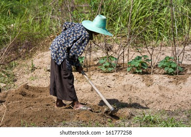 Woman farmer holding spade at field in island Koh Phangan, Thailand.