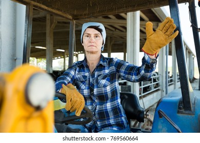 Woman farmer is sitting on the car at the cowfarm.