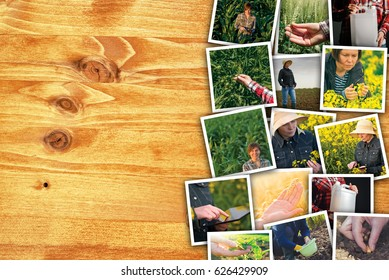 Woman in farming and agriculture, photo collage with copy space of many photographs depicting female farmer working in field and garden